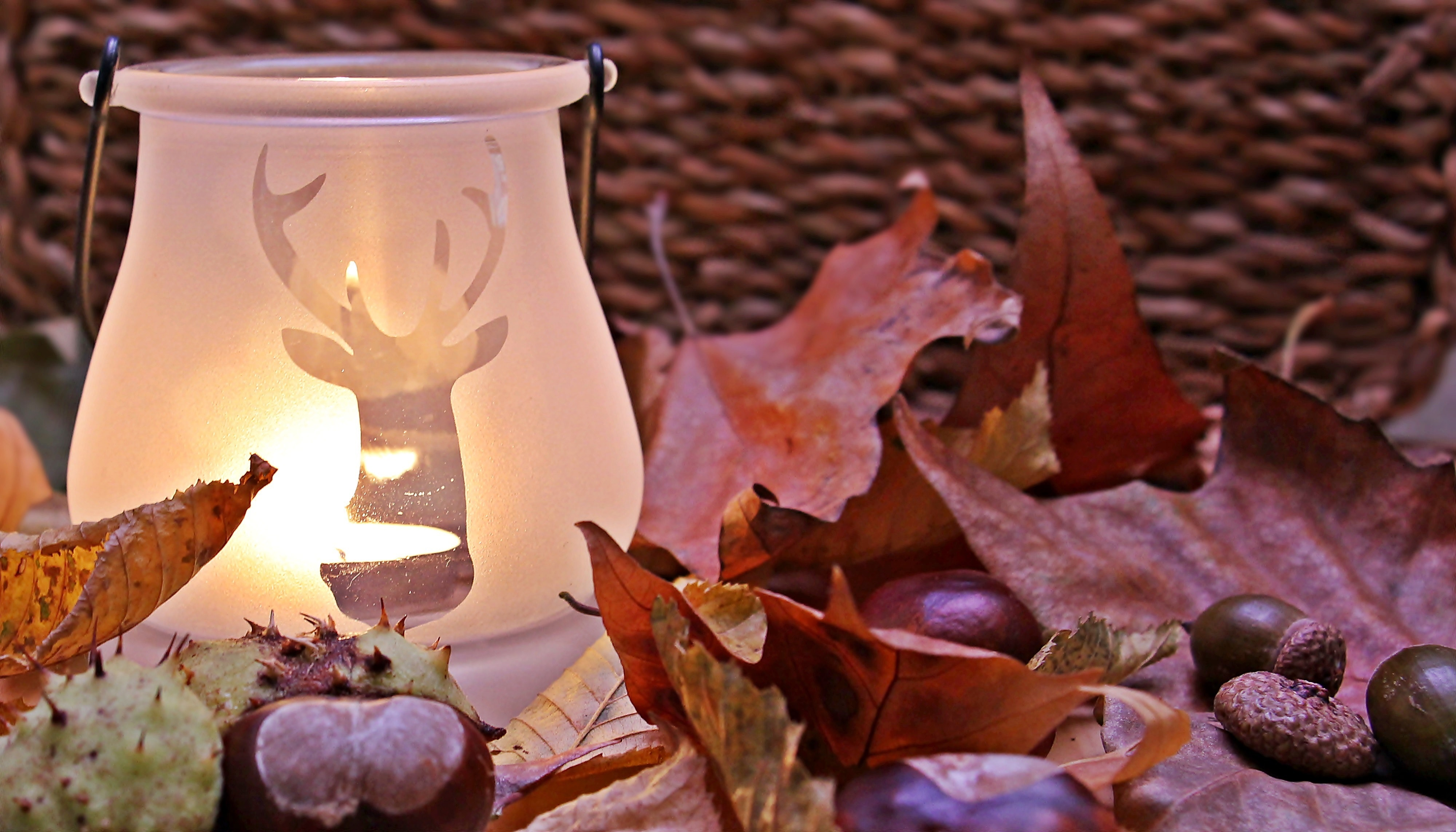 Winter Stag and Candle